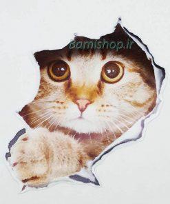 استیکر بدنه ماشین گربه